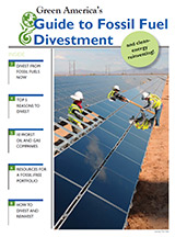 Green America's Guide to Fossil Divestment.