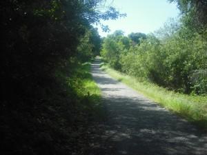 EmptyTrail
