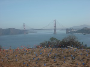 The Golden Gate Bridge, seen from the eastern end of Land's End trail.