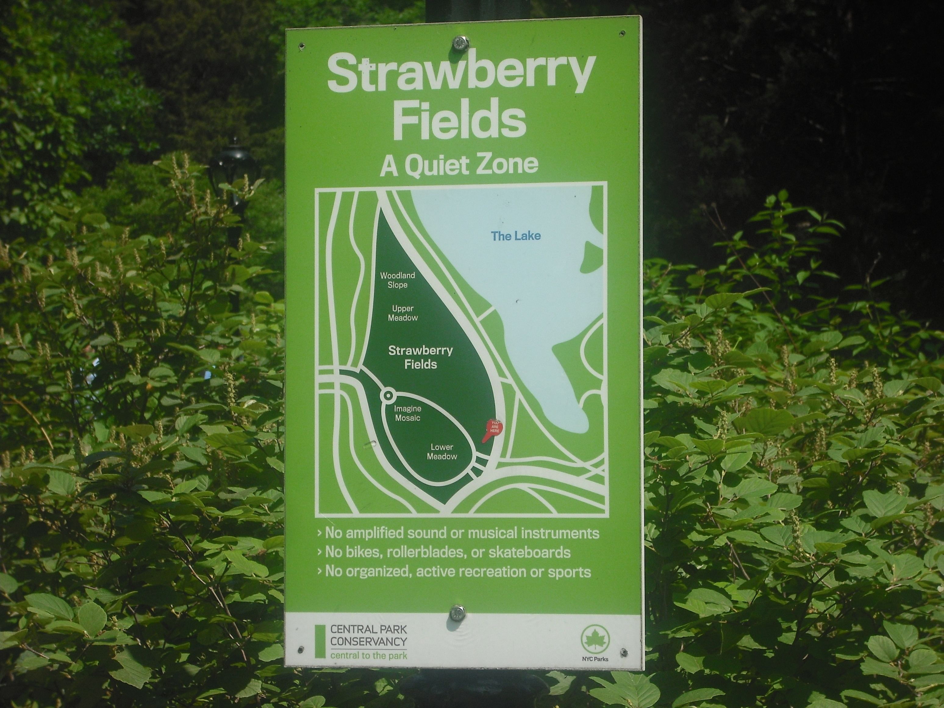 strawberry fields memorial � please turn on your cell