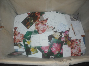 Laundry basket of postcards filled out by visitors to the exhibition.