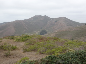 Typically semi-mountainous terrain on the inland part of the trail to Rodeo Beach.
