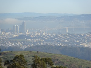 Part of the downtown San Francisco skyline and the Bay Bridge, as seen from San Bruno Mountain.