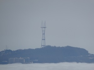 Sutro Tower in San Francisco, seen from the Coastal Trail, with the bay blanketed in fog.